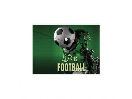 obal pp s patentkou a5 football