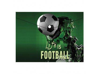 obal pp s patentkou a4 football