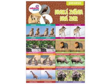 Zábavné pexeso - Divoká zvířata
