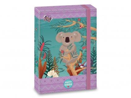 5204 box na sesity kirra koala a5.png