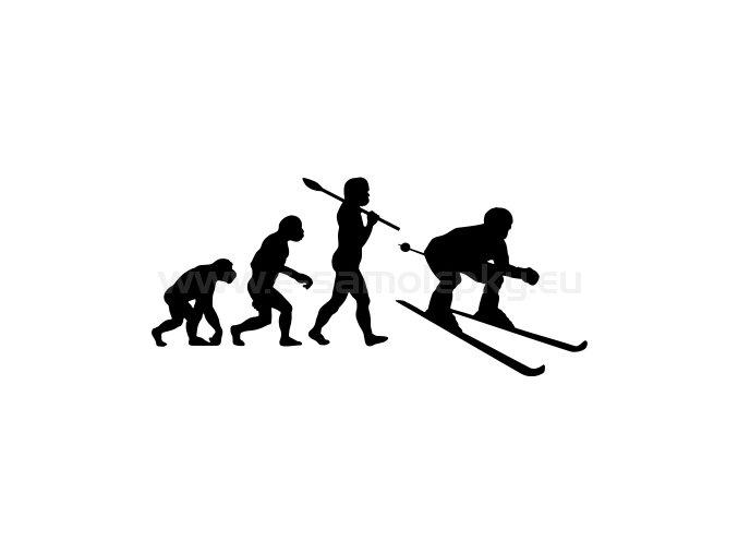 Samolepka - Lyžař evoluce