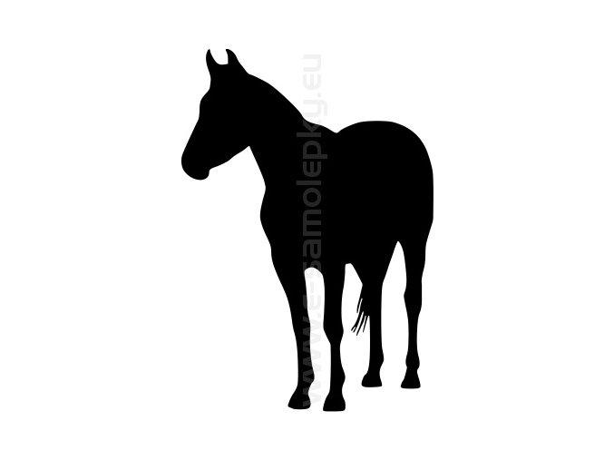 Samolepka - Kůň 33