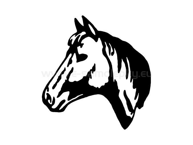 Samolepka - Kůň 37