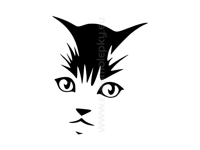 Samolepka - Kočka 19