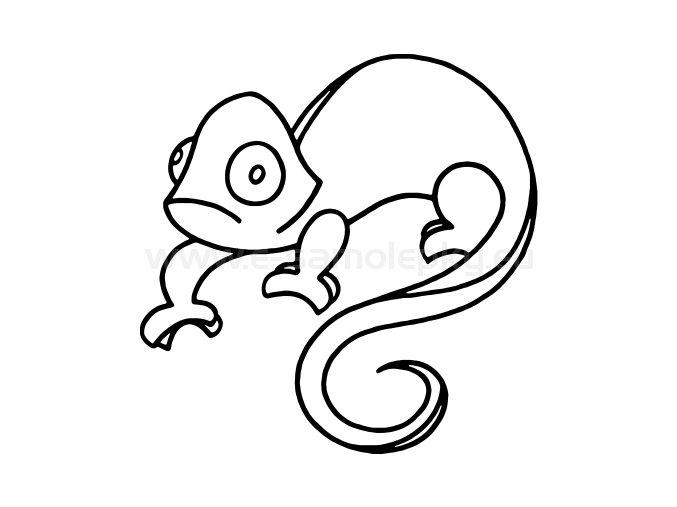 Samolepka - Chameleon