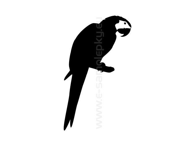 Samolepka - Papoušek 03