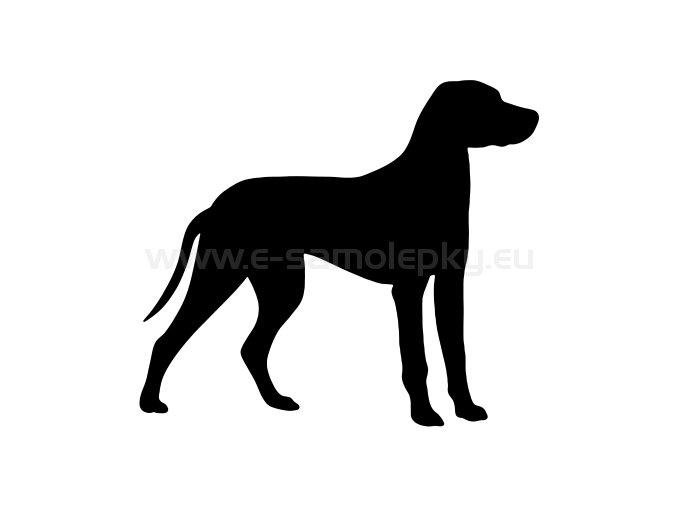 Samolepka - Pes 62