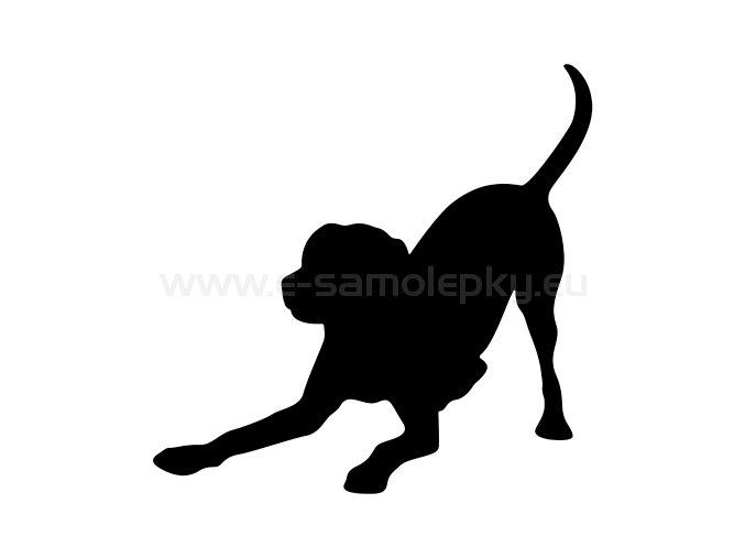 Samolepka - Pes 64