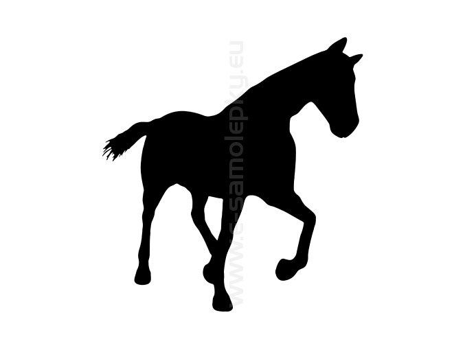 Samolepka - Kůň 41