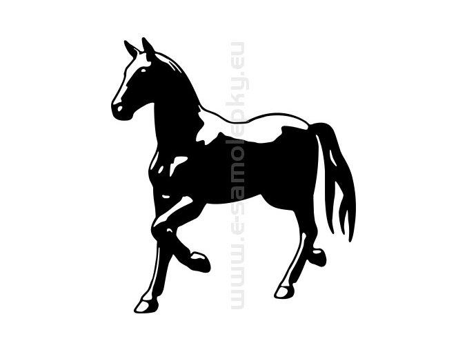 Samolepka - Kůň 53