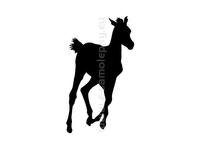 Samolepka - Kůň 51