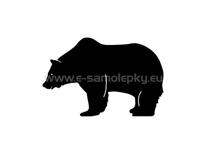 Samolepka - Medvěd