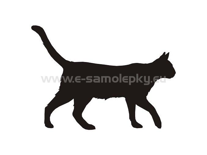 Samolepka - Kočka