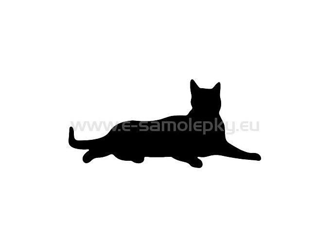 Samolepka - Kočka 13