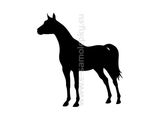 Samolepka - Kůň 20