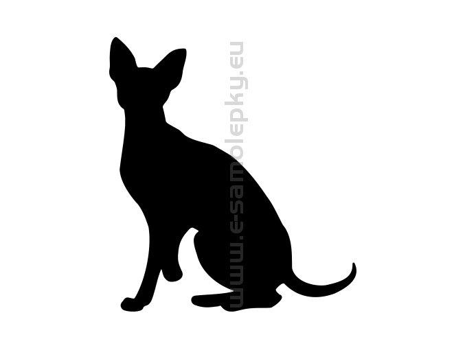 Samolepka - Kočka 31