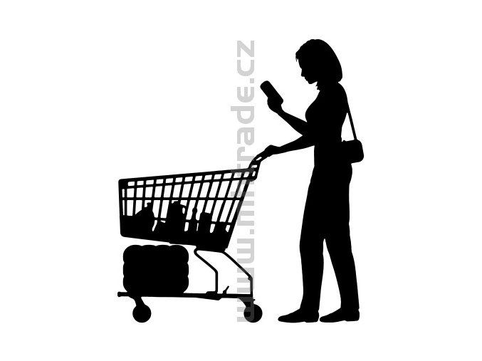 Samolepka - Shopaholic 03