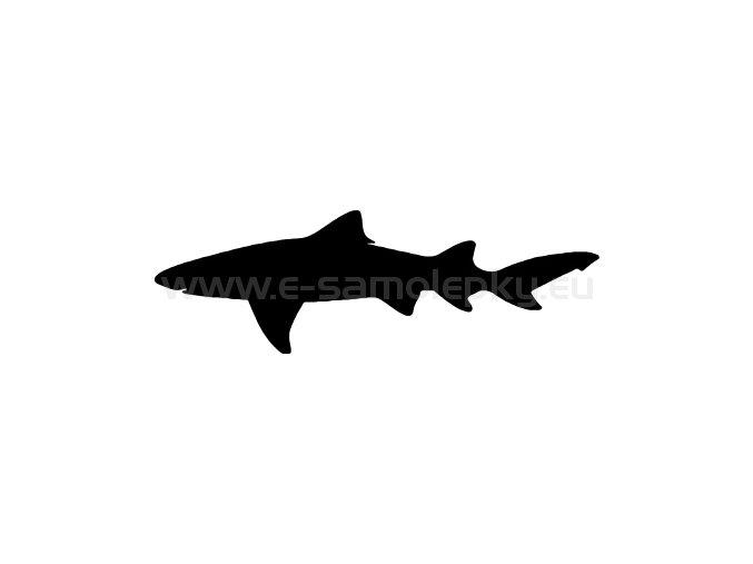 Samolepka - Žralok