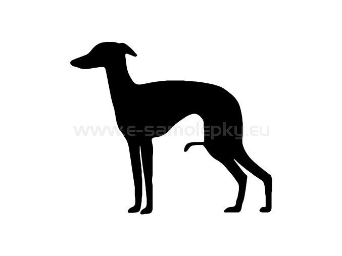 Samolepka - Pes 45