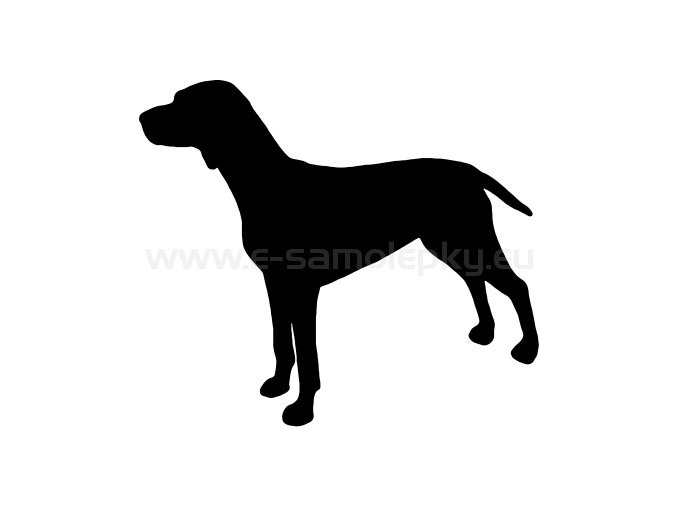 Samolepka - Pes 49