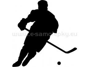 Samolepka - Hokejbalista