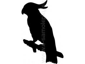 Samolepka - Papoušek