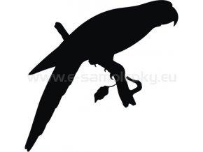 Samolepka - Papoušek 02