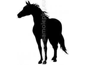Samolepka - Kůň 06