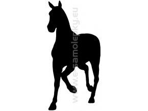 Samolepka - Kůň 10