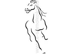 Samolepka - Kůň 18