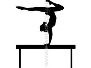 Samolepka - Gymnastika 02