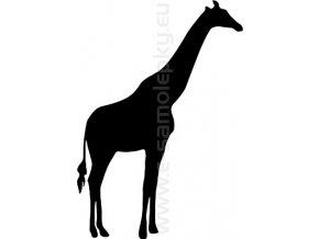 Samolepka - Žirafa