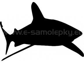 Samolepka - Žralok 02