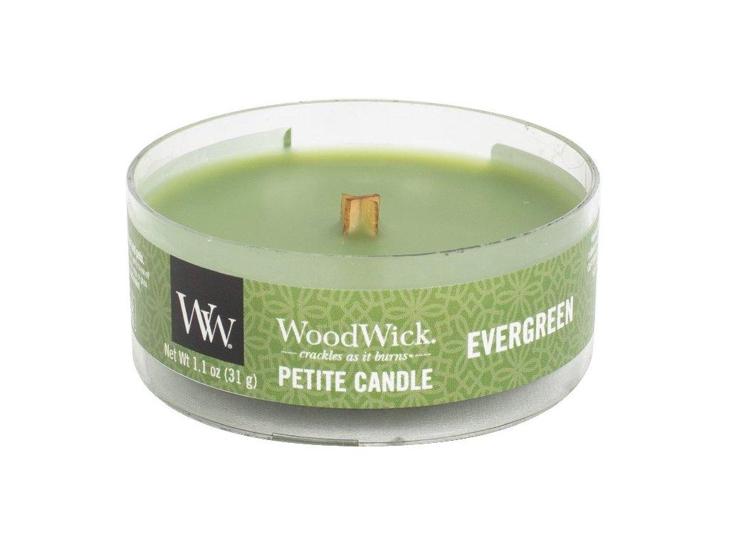 31814 WW kulatá Evergreen