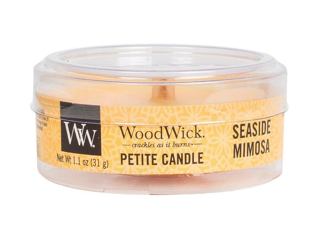 31962 1 WW kulatá víčko Seaside mimosa