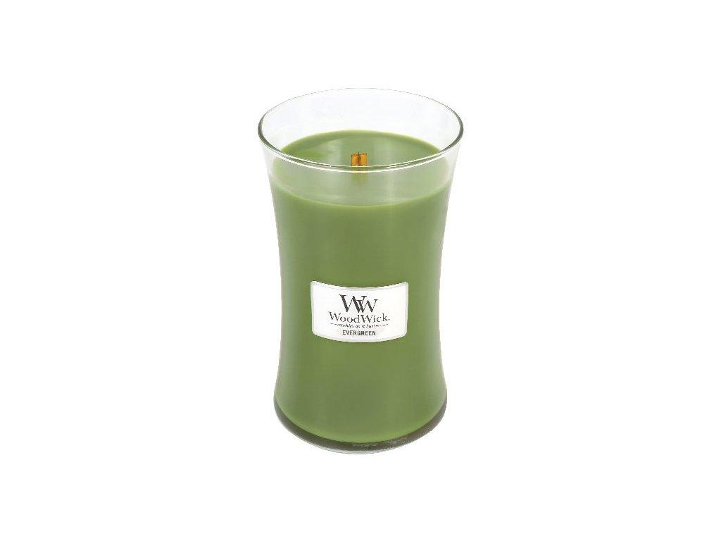 31810 WW velká Evergreen