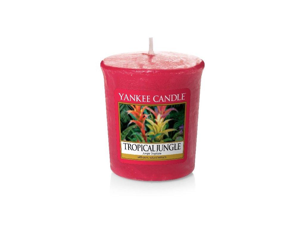 31564 YC votiv Tropical jungle