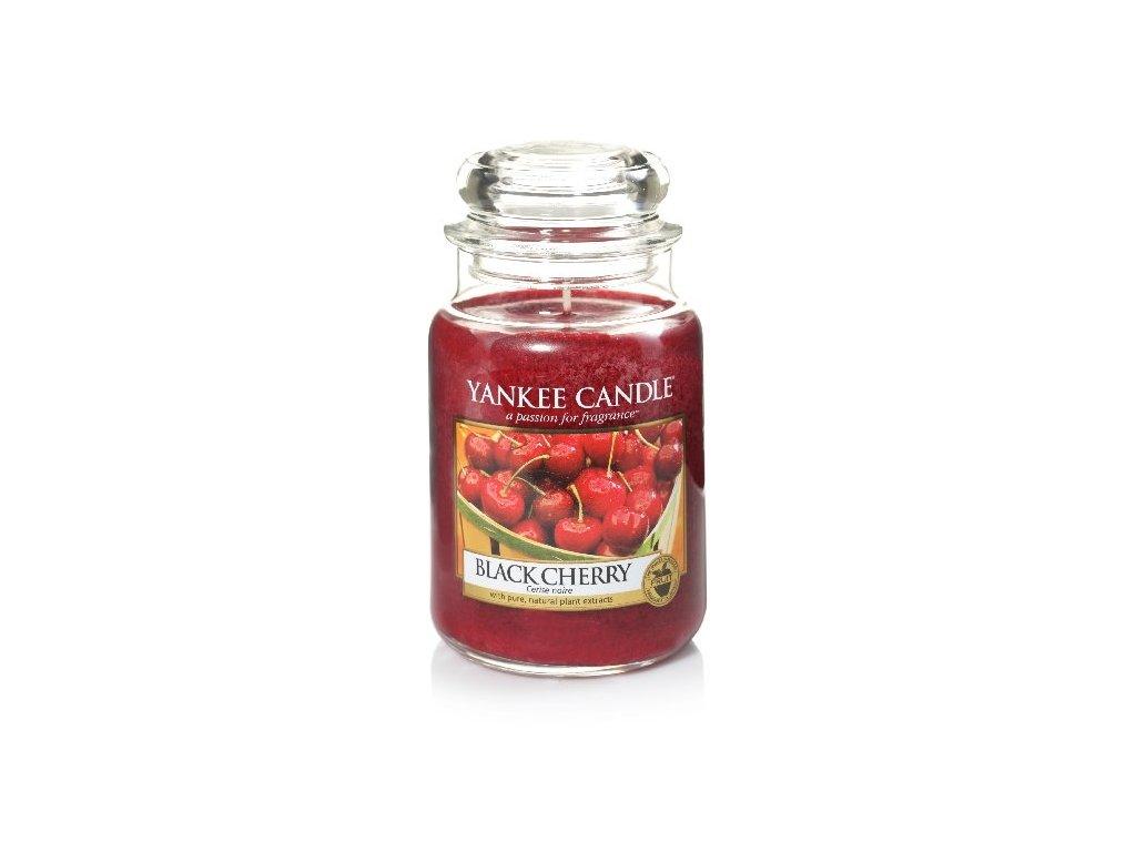 17769 YC velká Black cherry