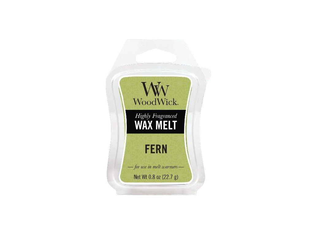 31821 WW vosk Fern