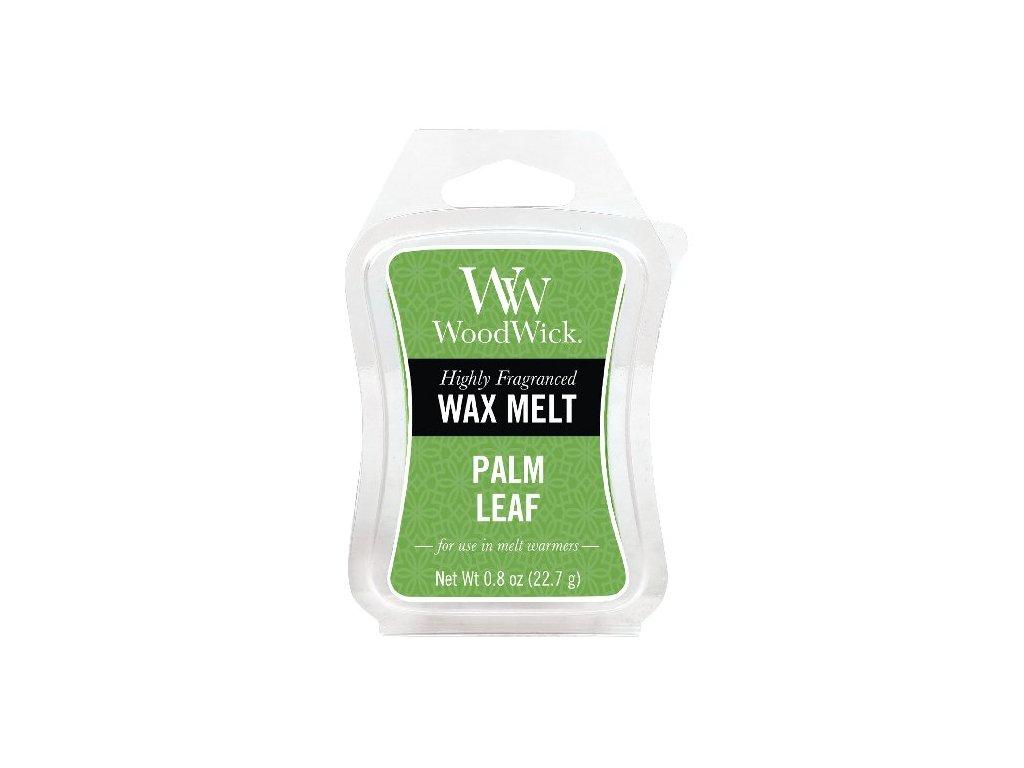 31905 WW vosk Palm leaf
