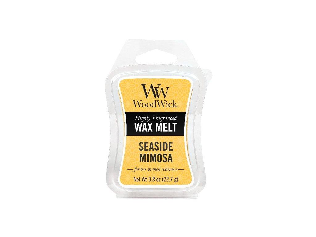 31963 WW vosk Seaside mimosa