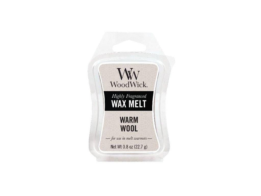 31995 WW vosk Warm wool