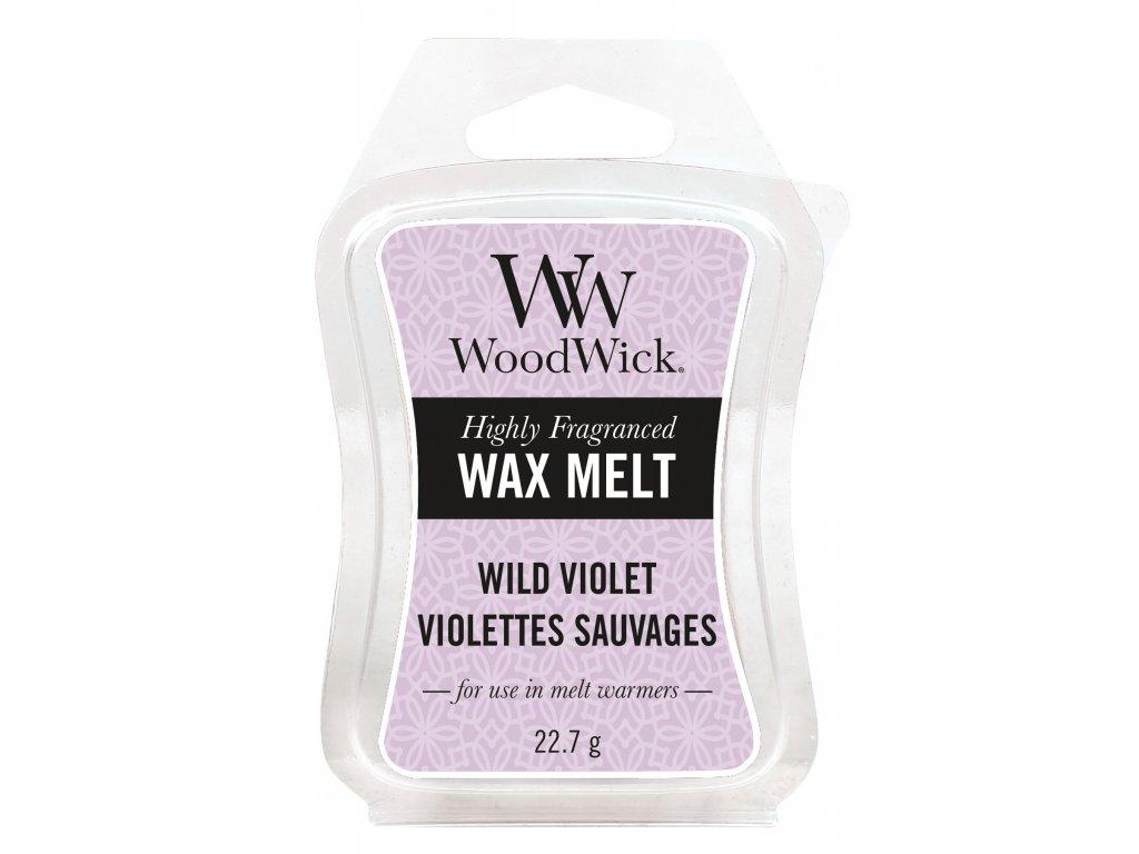 33844 WW vosk Wild Violet Violettes Sauvages