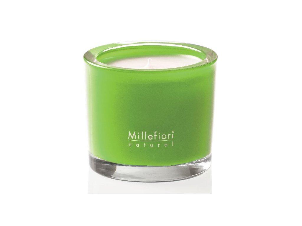Millefiori NATURAL VONNÁ SVÍČKA /GREEN FIG & IRIS