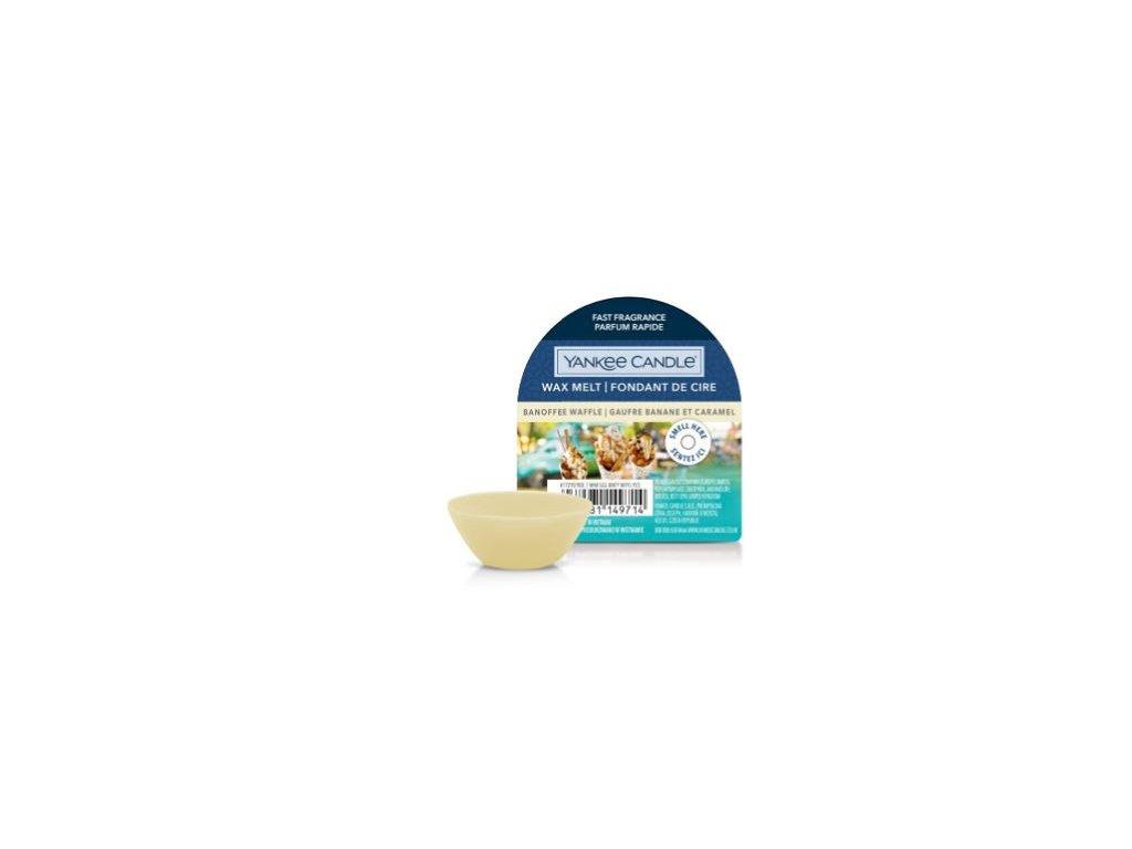 24892 YC vosk Angels wings