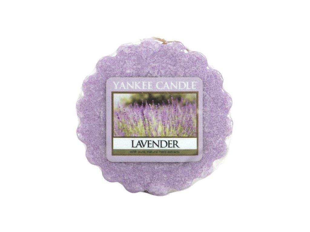 25366 YC vosk Lavender