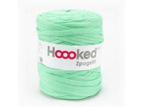 Hoooked Zpagetti - Apple (120)