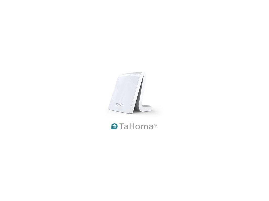 tahoma 1