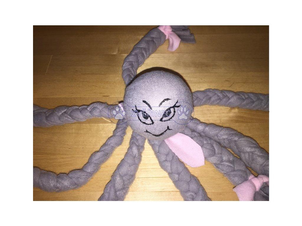 chobotnice 2