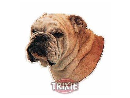 Samolepka anglický bulldog fe4057fcf2